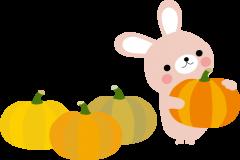 秋かぼちゃ